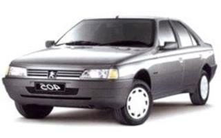Peugeot 405 Chip Tuning